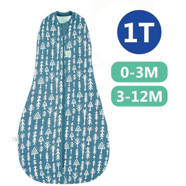 【全品牌任兩件贈三角圍兜】ergoPouch ergoCocoon 二合一有機舒眠包巾1T(夏季款)(0-3M/3-12M) 懶人包巾-針葉藍