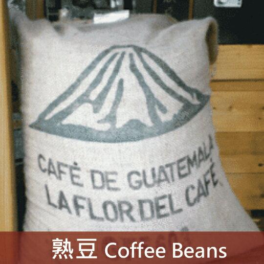【福璟咖啡】瓜地馬拉 安堤瓜 花神咖啡豆