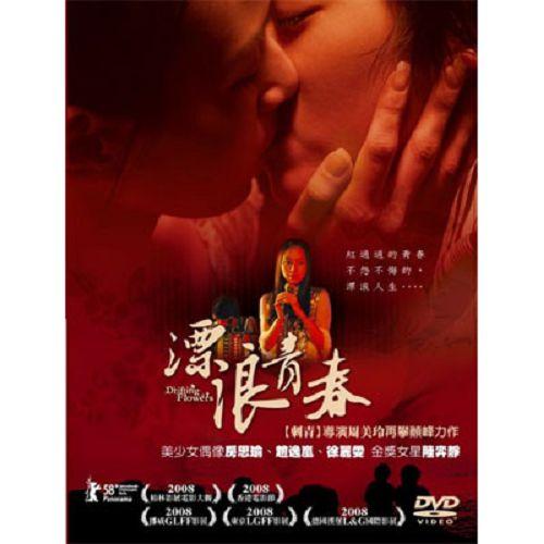 漂浪青春DVD(雙碟版)房思瑜趙逸嵐