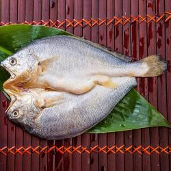黃魚 一夜干 (薄鹽)  250g~300g