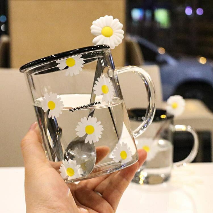 網紅小雛菊手柄玻璃杯帶蓋勺家用辦公家水杯花朵杯玻璃杯子馬克杯