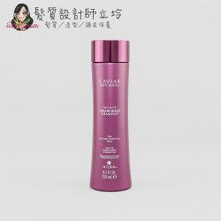 立坽『洗髮精』派力國際公司貨 Alterna CAVIAR 魚子醬 永恆護色洗髮露250ml HH04 HH15
