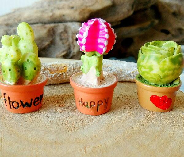 多肉仙人掌小盆栽擺飾  三個一組款 仙人掌  書桌擺飾 療癒商品 不凋擺飾 文創商品