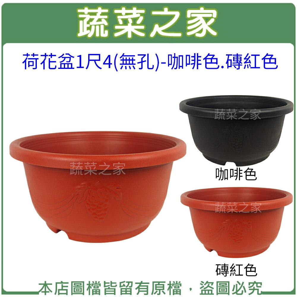 ~蔬菜之家005~D125~荷花盆1尺4 無孔 ~咖啡色.磚紅色