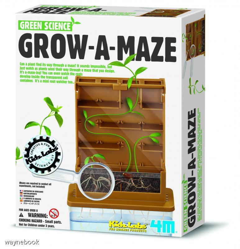 【4M】科學探索系列-植物迷宮 GROW-A-MAZE 00-03352