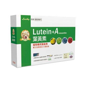 [寵物]Lucky 寵物專用葉黃素, 粉劑可添加於飼料中, 保護寵物眼睛