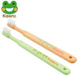 哈皮蛙 Kaeru 清潔乳牙刷6-18m x1入 (綠/橘)【悅兒園婦幼生活館】