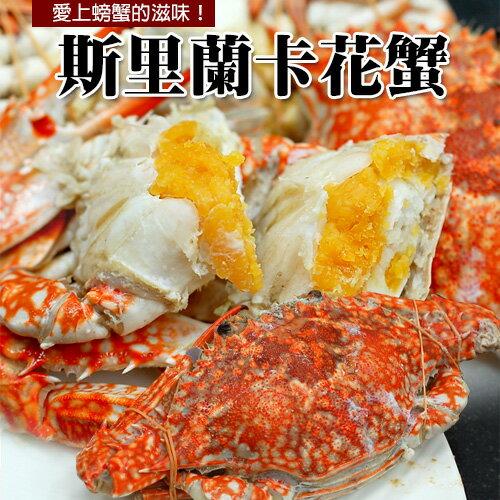 【築地一番鮮】斯里蘭卡母花蟹(200g-250g/隻)