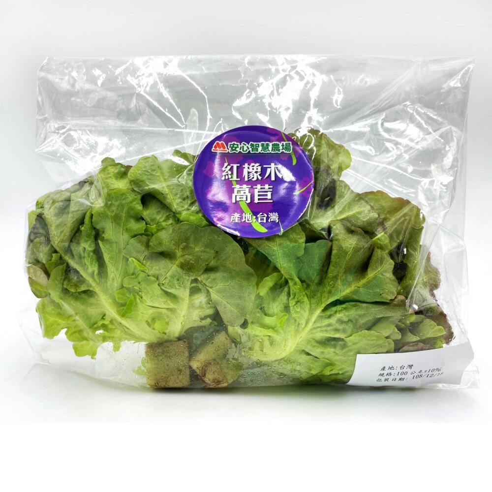 (免運)【MOS摩斯漢堡】水耕蔬菜嘗鮮組-奶油波士頓萵苣(180g / 包)(3入)紅橡木萵苣(150g / 包)(3入)(限時贈和風醬(220g / 罐)(1入) 1