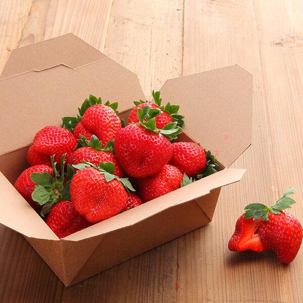 草莓甜心餐盒❤22入台灣草莓