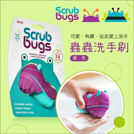 ✿蟲寶寶✿【美國ScrubBugs】讓寶貝愛上洗手~三勤洗手遠離腸病毒倍清潔力洗手蟲清潔刷紫色