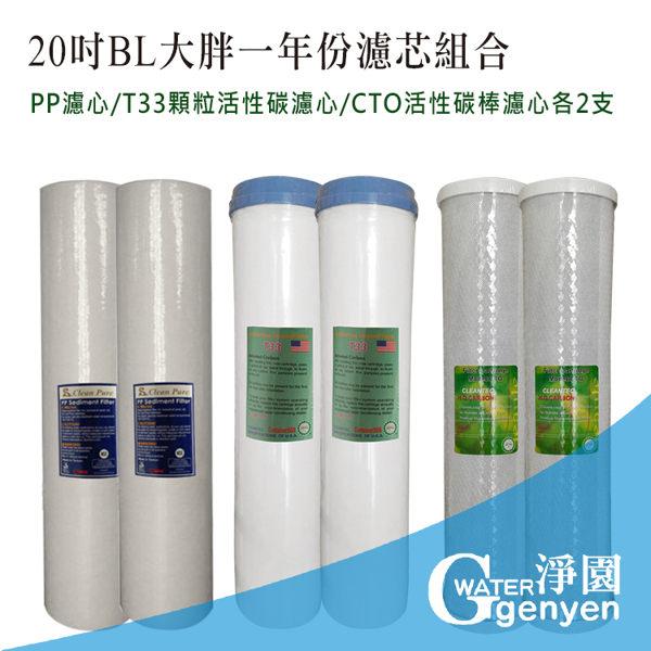 20吋BL大胖一年份濾心組合共6支(PP濾心2支+顆粒活性碳濾心2支+活性碳棒濾心2支)(適用全戶過濾)
