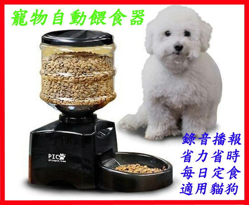 [BEEBUY]☆Petwant☆5.5公升超大容量自動餵食器 自動寵物餵食器 寵物自動餵食器