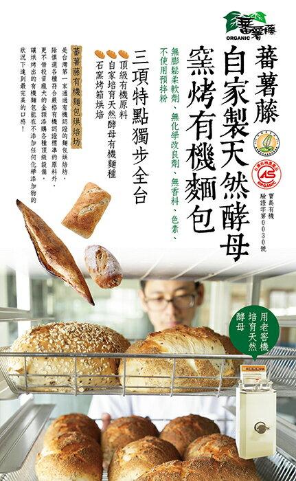 [蕃薯藤]有機全麥多穀物雜糧麵包 1