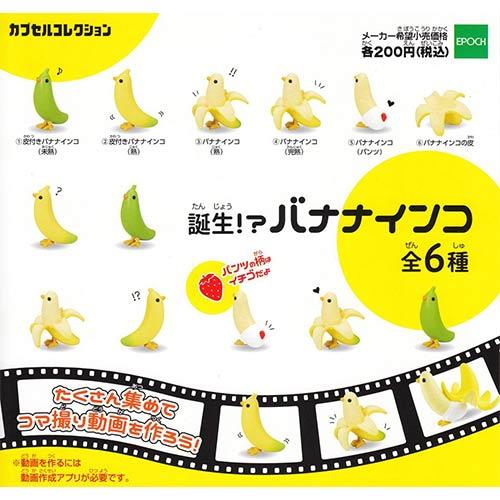 全套6款【日本正版】趣味香蕉鸚哥誕生篇扭蛋鸚鵡擺飾EPOCH-605412