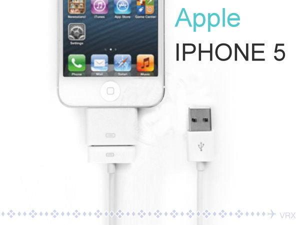 iPad Mini iPod touch iPhone5 USB充電線8pin轉30pin轉【GF379】◎123便利屋◎