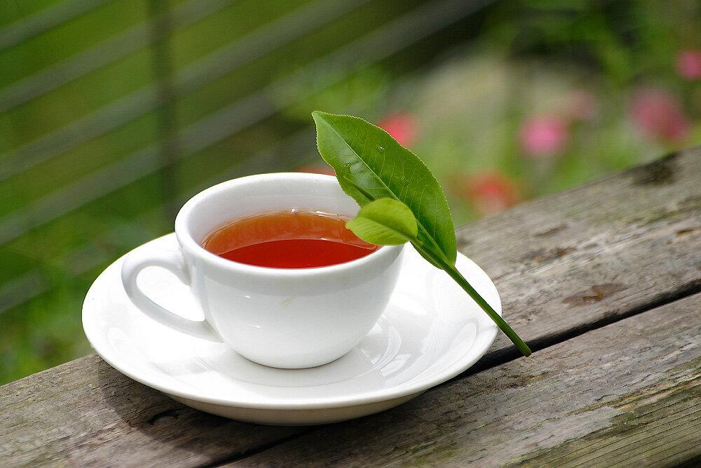 Stassen 司迪生★精選紅茶★【100入*1盒】 1