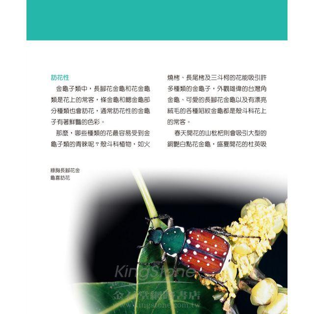 甲蟲王者:50隻最強、最美的台灣獨角仙、鍬形蟲圖鑑 3
