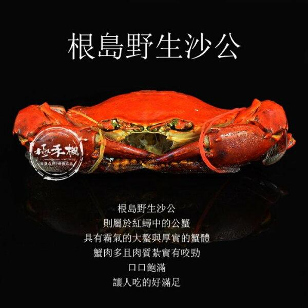 極禾楓肉舖&根島活力蟹(熟凍紅蟳)