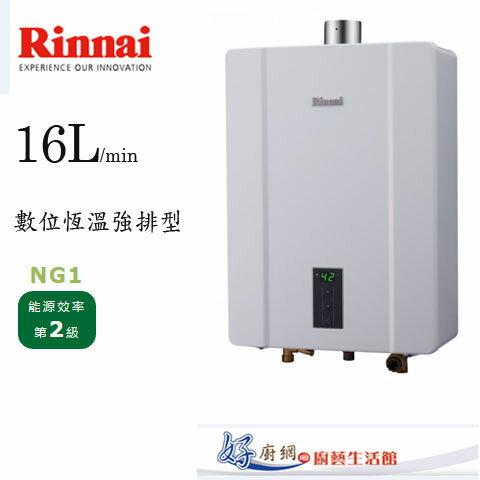 【林內】RUA-C1600WFFE強制排氣式熱水器(RUA-C1600WF)