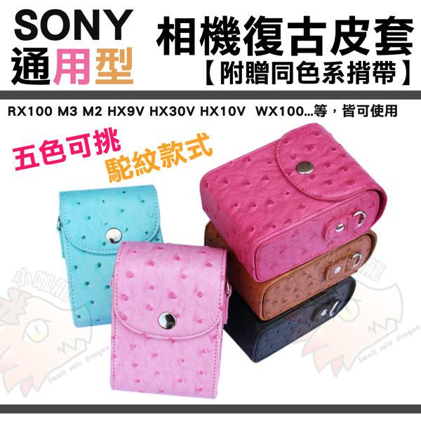 ~小咖龍~ Sony 索尼 相機包 RX100 M2 m3 m4 HX9V HX30V H