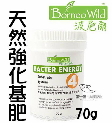 ^~第一佳水族寵物^~新加坡波尼爾Borneo Wild ^~70g^~ Bacter E
