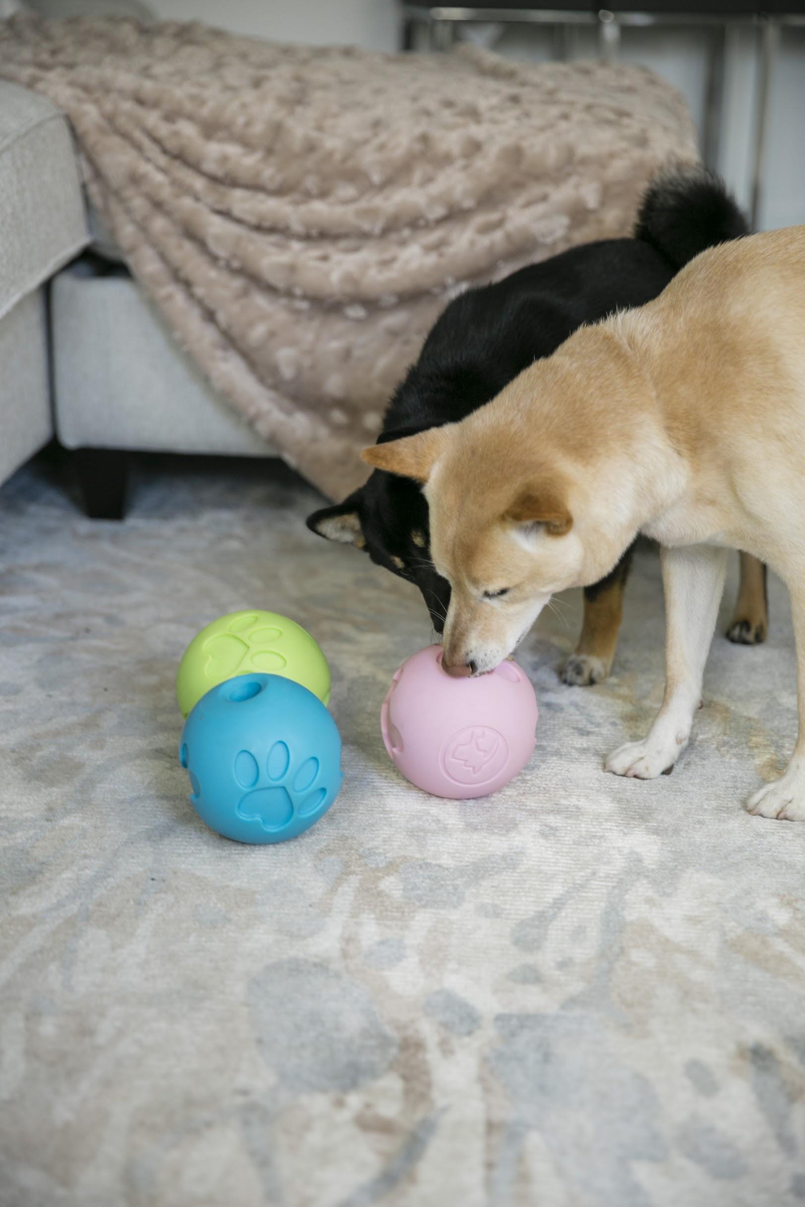 Petique 寵物零食球 | 寵物玩具、漏食球 4