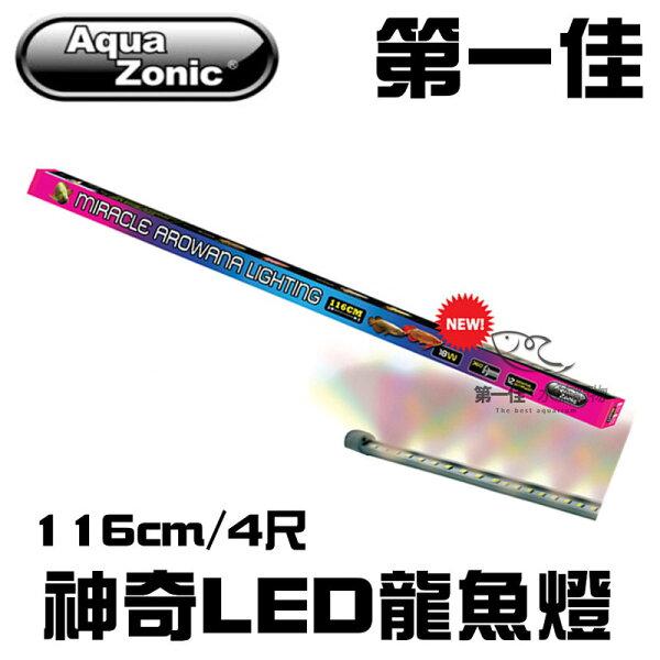 [第一佳水族寵物]AL211新加坡AquaZonic艾柯仟湖神奇龍魚燈LED(條型)116cm4尺免運
