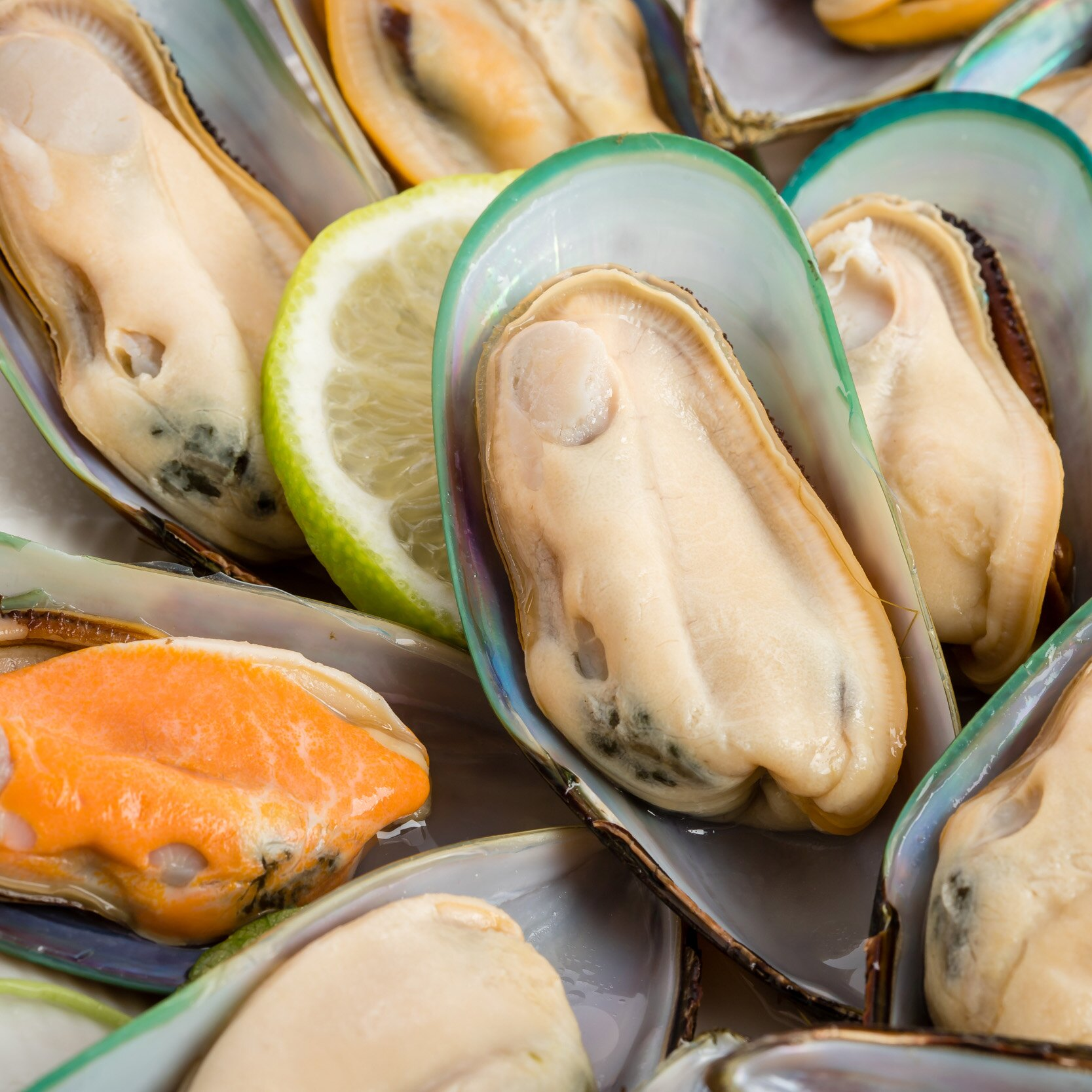 紐西蘭半殼淡菜 15  18  500G±5%  盒  | 派大鮮