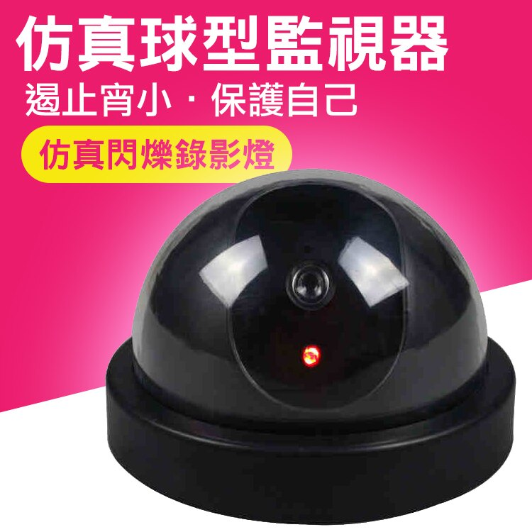 仿真 球型監視器 DB6941