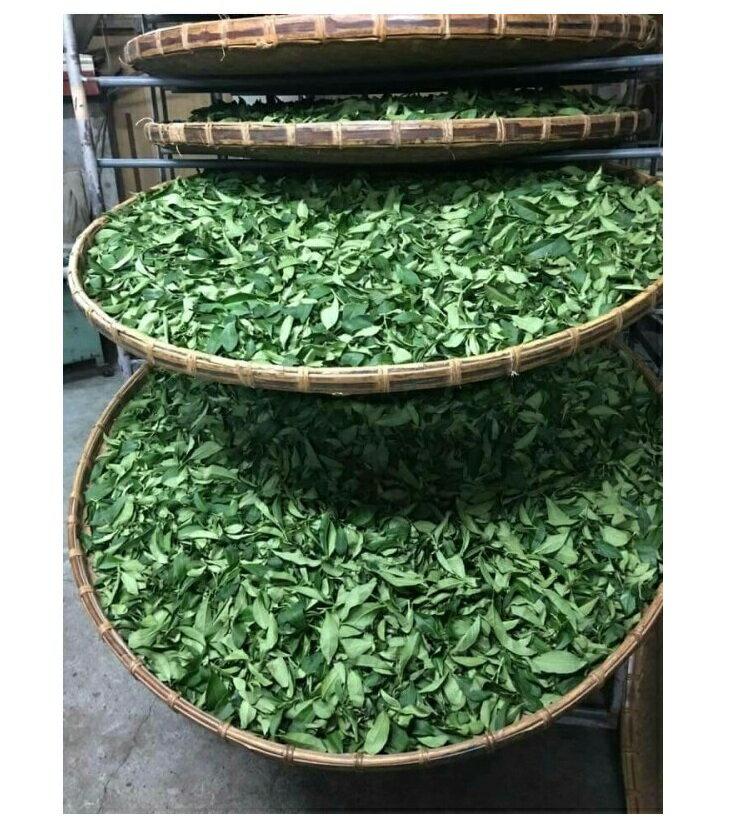 茶  支持台灣小農 冷泡茶熱泡茶1包3克X30包 茶農/阿里山高山烏龍茶/綠茶/半發酵烏龍茶/鼎茗茶葉/蝶豆花
