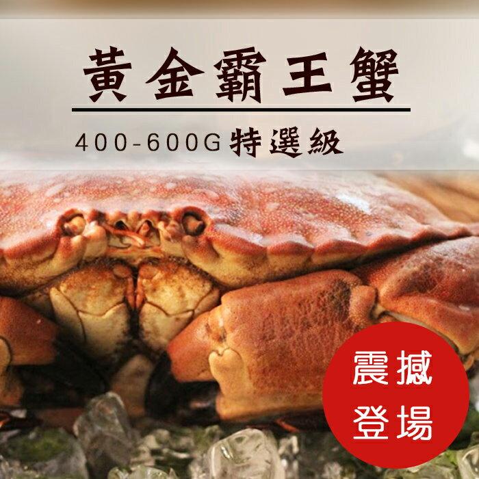【陸霸王】巨無霸黃金霸王蟹400-600g【新品上市】