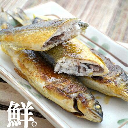 外銷日本等級宜蘭巨無霸爆卵母香魚(200g)