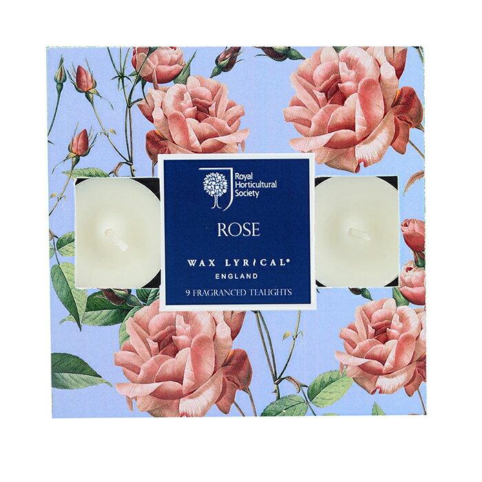 英國Wax Lyrical 迷你蠟燭9入組-玫瑰
