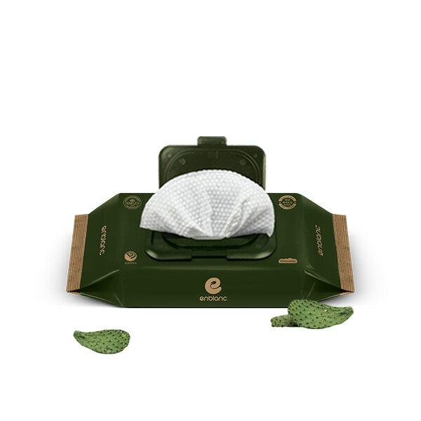 韓國 Enblanc 銀離子抗菌 有蓋輕裝純水濕紙巾-極厚仙人掌32抽【悅兒園婦幼生活館】【618購物節】