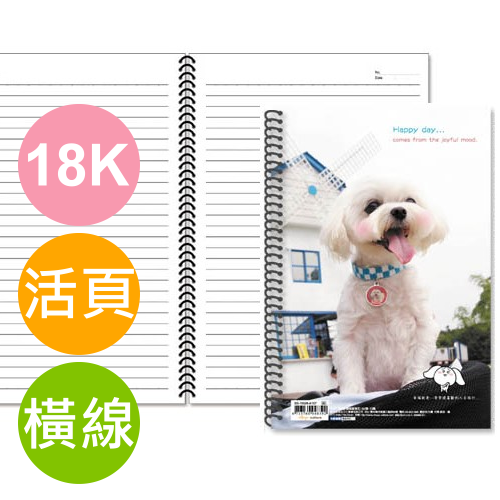 Chuyu珠友 SS10026 B5/18K 橫線活頁筆記本 - 80張 (A107)