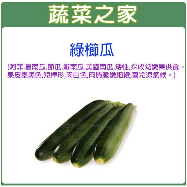 【蔬菜之家】G62.綠櫛瓜種子2顆(阿菲.夏南瓜.節瓜.嫩南瓜.美國南瓜)