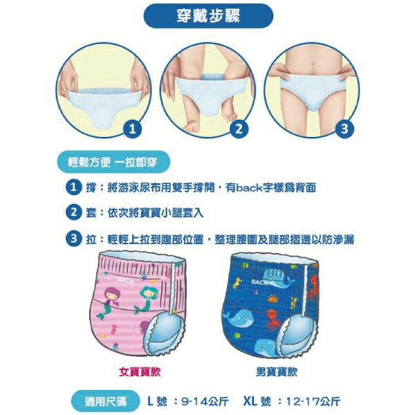 Nuby 游泳尿布|游泳戲水褲-男 / 女(L / XL)3入好窩生活節 2