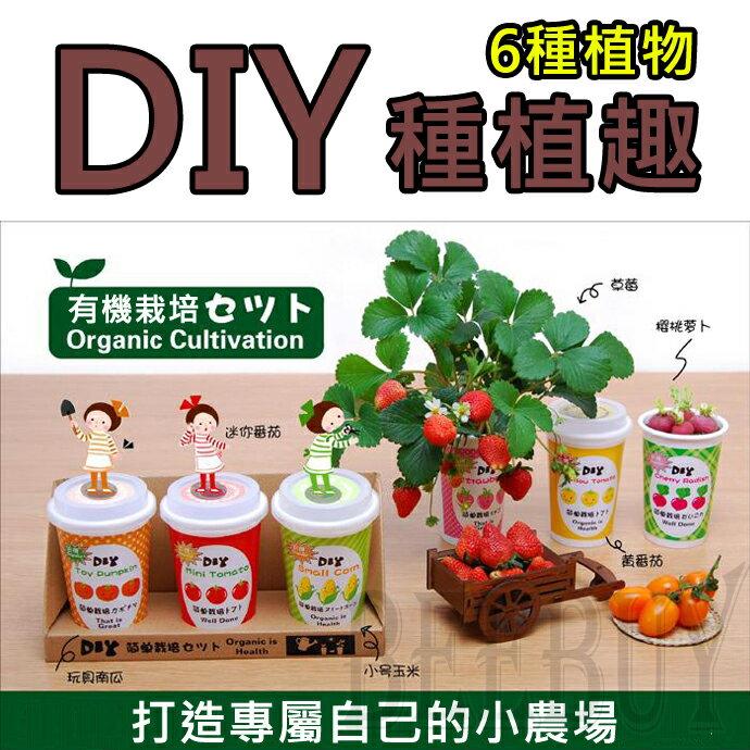 DIY有機種植 六種 植物 草莓 櫻桃蘿蔔 黃番茄 玩具南瓜 迷你番茄 小號玉米 享受種植樂趣 家庭 造景 裝飾物 園藝