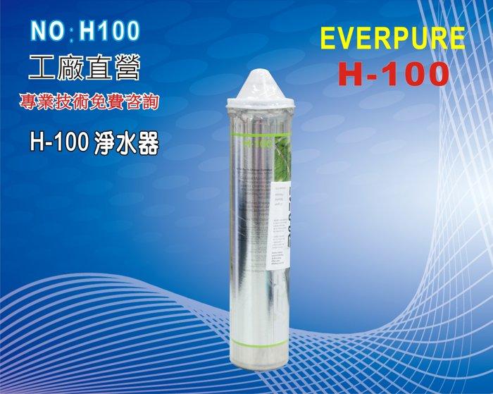 【龍門淨水】Everpure/H-100淨水器.濾心.餐廳.飲料店過濾器.(貨號H100)
