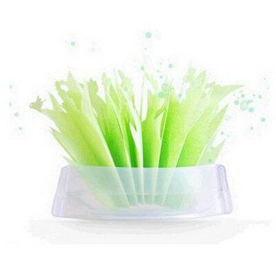 【省錢博士】創意環保綠色加濕器 / 不用通電加濕器
