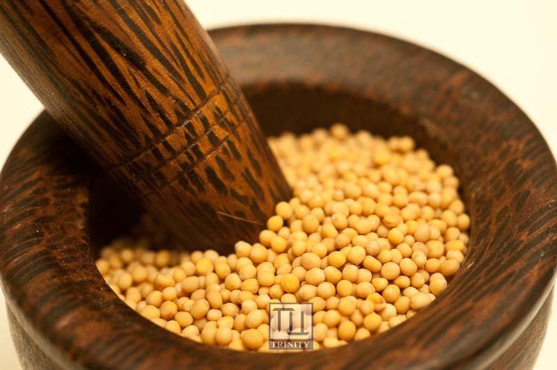 Yellow Mustard Seeds 印度黃芥末子