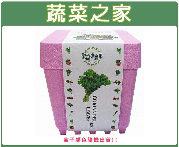 【蔬菜之家004-D03】iPlant小農場系列-香菜