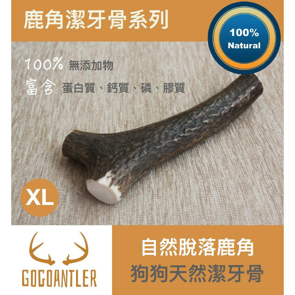 【汪汪鹿角天然潔牙骨】 自然脫落鹿角 (XL) 0