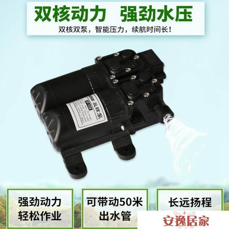 電動農用多功能雙泵高壓果樹充電手提式電動噴霧機【安逸居家】YTL