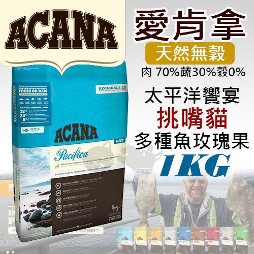 《愛肯拿ACANA》太平洋饗宴 / 挑嘴貓無穀配方 - 多種魚玫瑰果 1kg/貓飼料