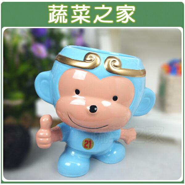 <br/><br/>  【蔬菜之家004-G18BL】猴賽雷陶瓷造型花盆-藍色<br/><br/>