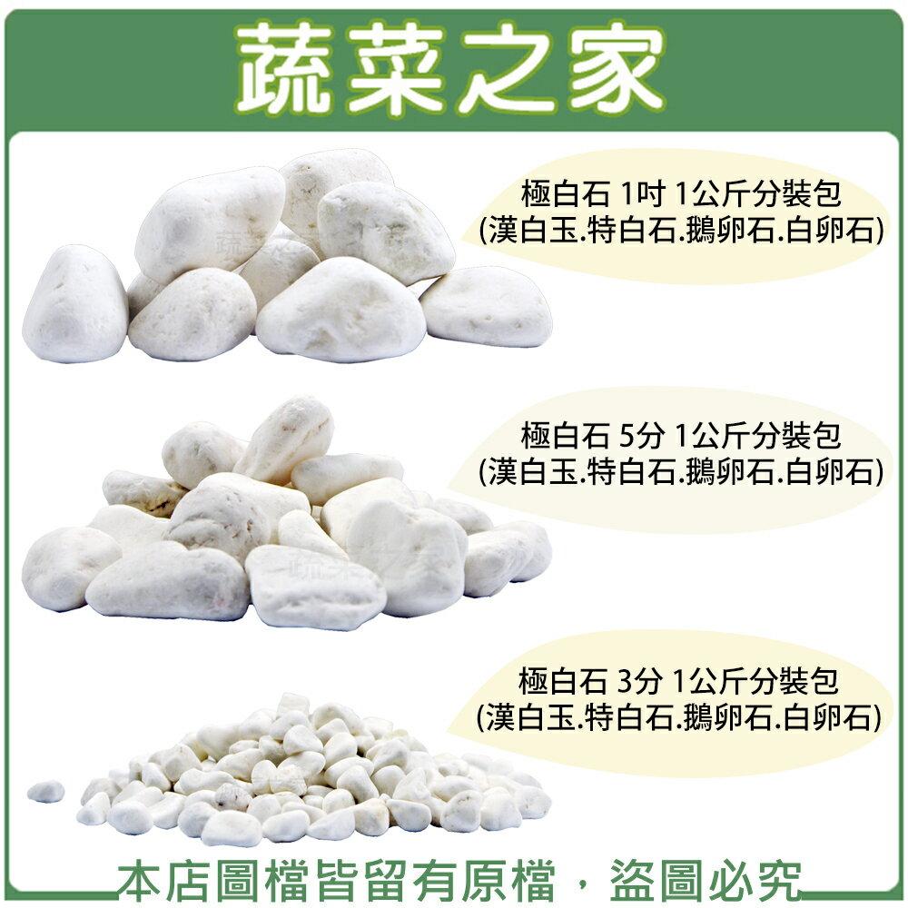 【蔬菜之家】極白石 1公斤分裝包(3分、5分、1吋,共三種尺寸可選)(漢白玉.特白石.鵝卵石.白卵石)