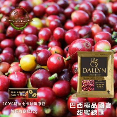 【DALLYN】巴西甜蜜總匯濾掛咖啡100入袋 Brasil Sweet Colletion | DALLYN世界嚴選莊園 1