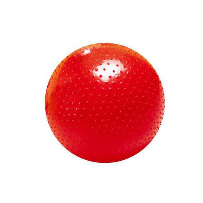 【華森葳兒童教玩具】感覺統合系列-大觸覺球/環保 B7-NON-P-0002